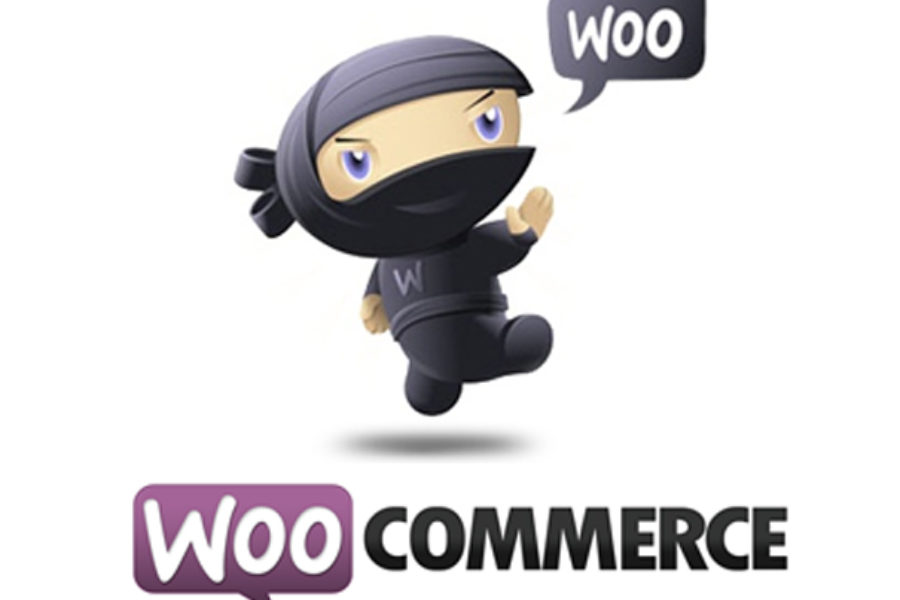 9 Reasons Why WooCommerce is Perfect For Ecommerce Startups